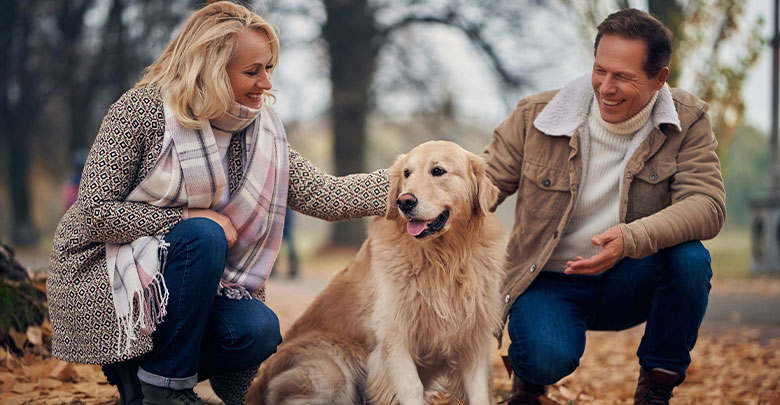 An attractive middle aged couple are petting their golden retriever whilst enjoying an active lifestyle in the woods - motivation to lose weight so that you can enjoy your life!