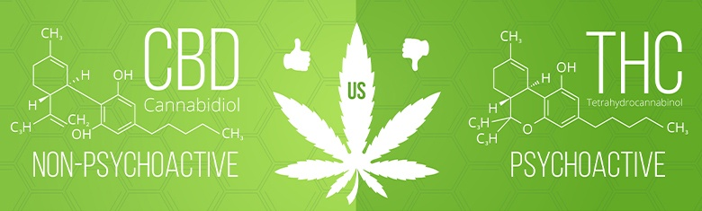 CBD oil is different to THC